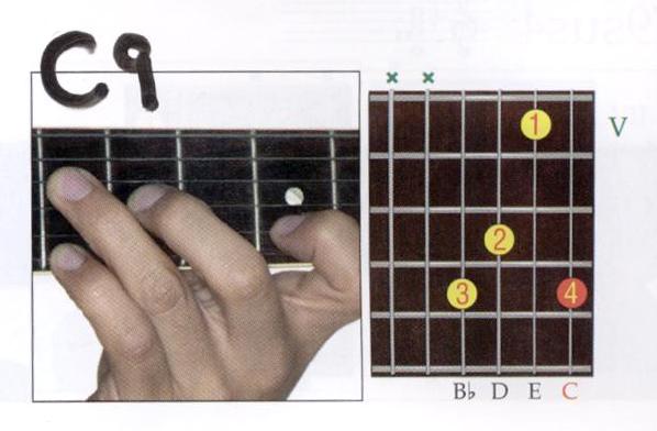 C9 001 | flagler guitar